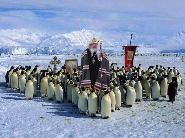 I srećni se vratiše na Sibir - Izvor: FB stranica dnevna doza čemera i jada