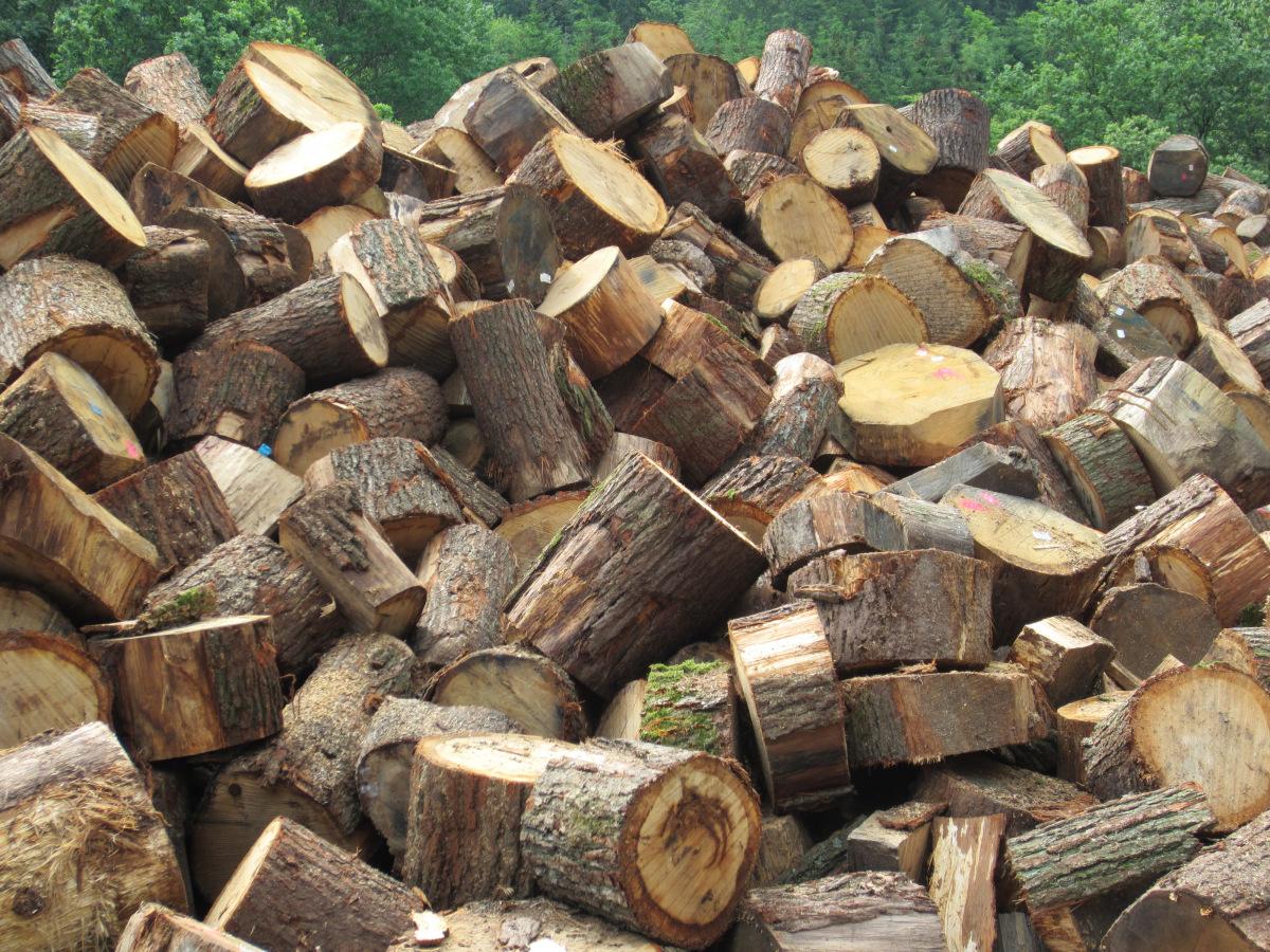 drvo-za-ogrjev-rascjepan-ne-rascjepan-drva-za-potpalu-oblice-necepane